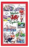 Iconic Wales Tea Towel Souvenir Gift Welsh Cymru Cardiff Castle Red Dragon Conwy New
