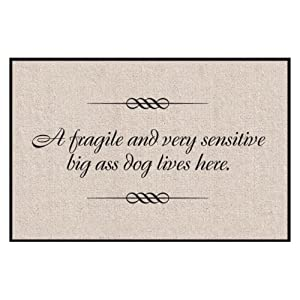 Fragile and Sensitive Dog Indoor/Outdoor Doormat by High Cotton Inc