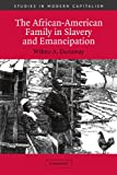 The African-American Family in Slavery and Emancipation (Studies in Modern Capitalism)