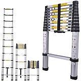 Telescoping Ladder: Aluminum 10.5 ft Extension Ladder (330 lb Limit)