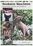 Rassekatzen - klasse Katzen: Vererbungslehre und Rassebeschreibung