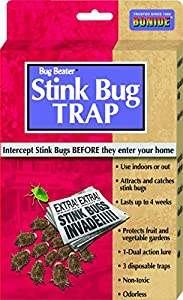 Bonide 198 Natural Stink Bug Trap