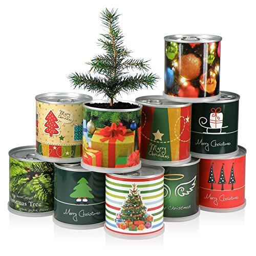 Extragifts-Albero-di-natale-in-lattina-Merry-Christmas-verde