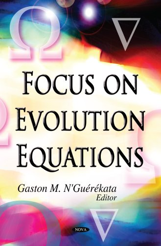 Focus on Evolution Equations