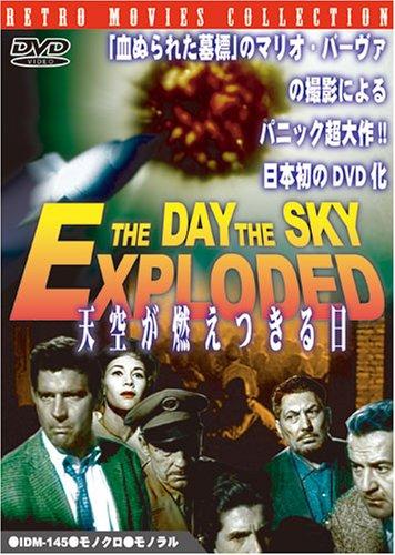 天空が燃えつきる日 [DVD]