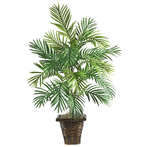 Areca Palm Silk Plant