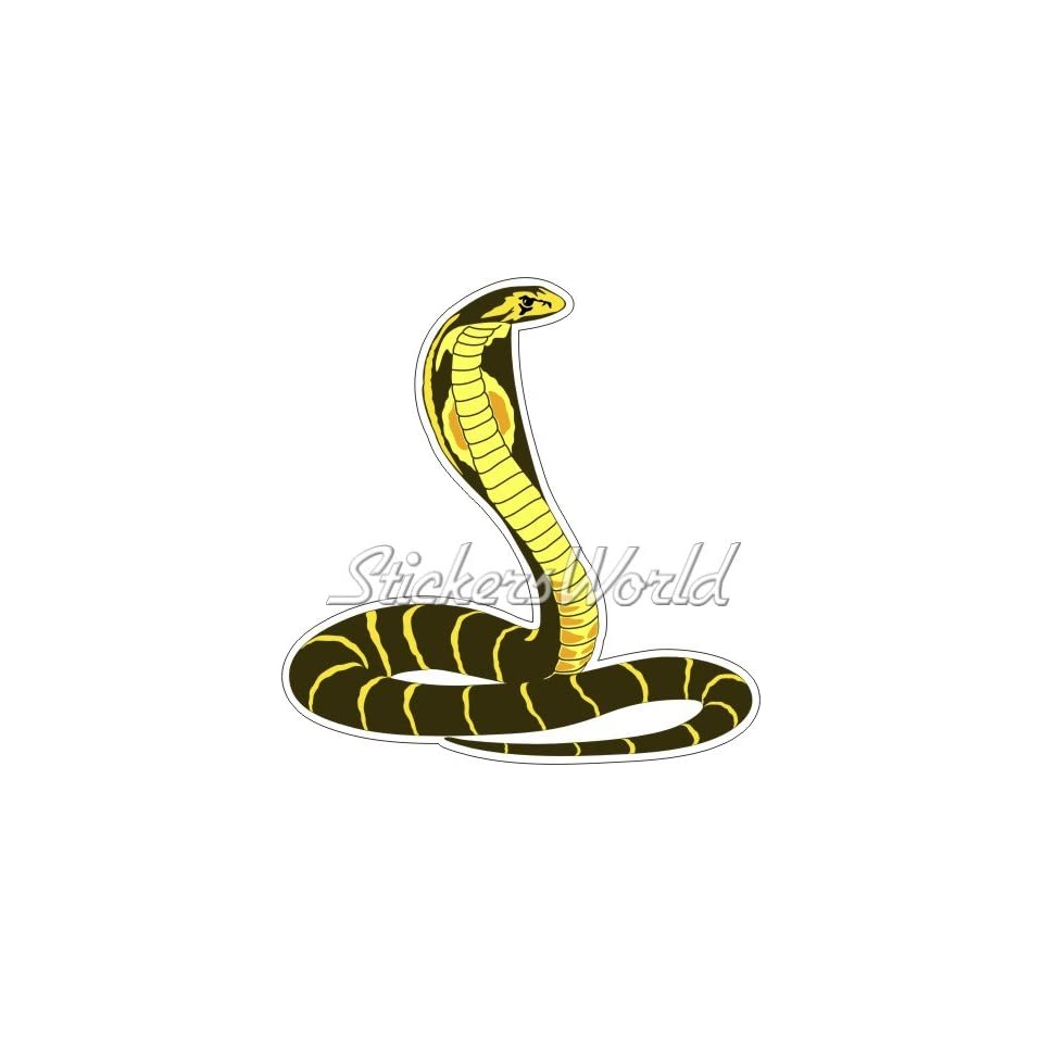 Coiled King Cobra Snake Car Bumper Sticker Decal 3/'/' or 5/'/'