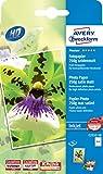 Avery Zweckform C2552-50 Premium Inkjet Fotopapier 50 Blatt