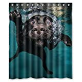 """Popular funny lovely Labrador dog Bathroom Shower Curtain, Shower Rings Included 100% Polyester Waterproof 60"""" x 72"""""""