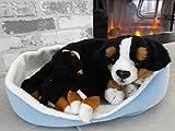Brigamo Spiele 13438 - Plüsch Hund Berner Sennenhund mit Welpen im Körbchen aus Plüsch thumbnail