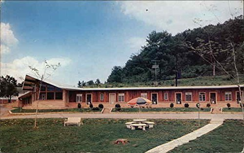 The Tennessean Motel Rogersville, Tennessee Original Vintage Postcard (The Tennessean compare prices)