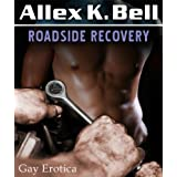Roadside Recoverydi Allex K. Bell