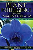 Plant Intelligence and the Imaginal Realm: Beyond the Doors of Perception into the Dreaming of Earth (English and English Edition)