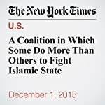 A Coalition in Which Some Do More Than Others to Fight Islamic State | Peter Baker