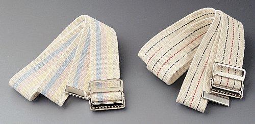 Transfer Belts,Multi-Color Pastel