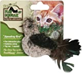 Backyard Bird Cat Toy