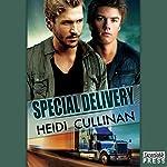 Special Delivery: Special Delivery, Book 1 | Heidi Cullinan
