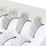 AGPtEK Handmade Natural Fashion Long False Eyelashes For Makeup (10 Pairs) (Color: False Eyelashes)