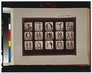 Photo: Athletes,posturing,animal locomotion,series,photographs,Eadweard Muybridge,c1881