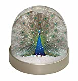 Rainbow Feathers Peacock Snow Dome Globe Waterball Gift