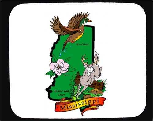 Seng Nduwe Ngamuk Mississippi State Flower And Bird