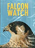 Falcon watch