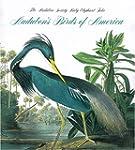 Tiny Folio:Audubon's Birds