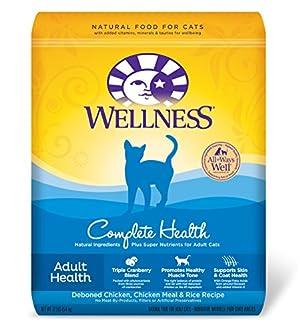Purina One Wet Cat Food Bulk