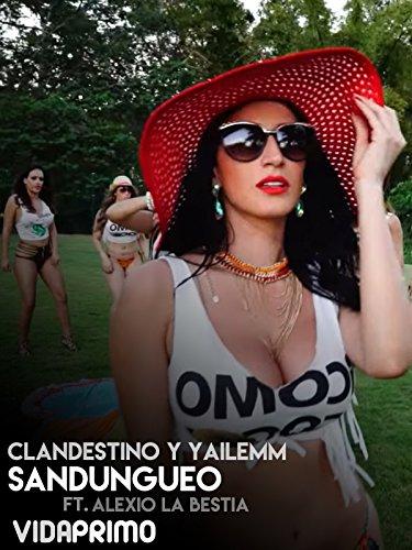 Clandestino y Yailemm