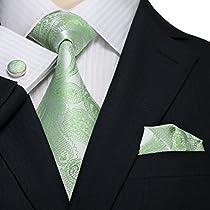 Landisun 146 Light Green Paisleys Mens Silk Tie Set: Tie+Hanky+Cufflinks