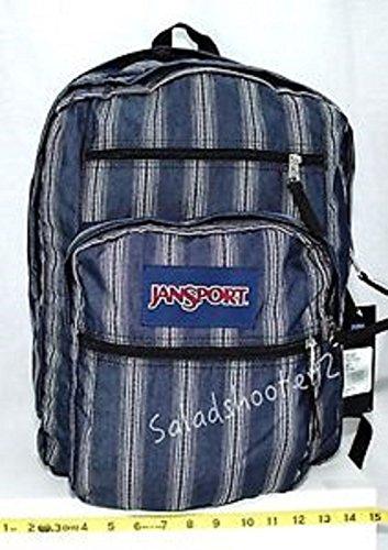JanSport Big Student Backpack (Neutral Multi denim stripe)