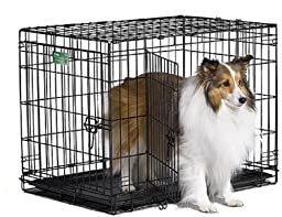 MidWest iCrate Double-Door Folding Metal Dog Crate, 30 Inches by 19 Inches by 21 Inches