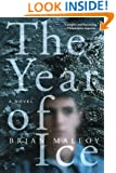 The Year of Ice: A Novel