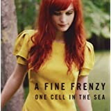 One Cell In The Seaby A Fine Frenzy