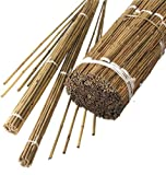 1.8m Bamboo Canes (Set of 10)
