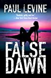 FALSE DAWN (Jake Lassiter Legal Thriller Book 3)