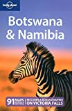 img - for Botswana and Namibia (Lonely Planet Multi Country Guides) by Firestone, Matthew (2010) Paperback book / textbook / text book