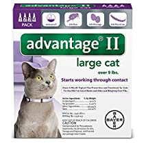 Advantage II Once-A-Month Topical Large Cat Flea Treatment, 4 mo., Over 9 lbs.