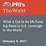 What a Cut to Its UN Funding Does to U.S. Leverage in the World | Catherine Whelan