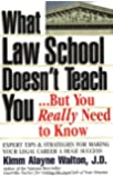 What Law School Doesn't Teach You...But You Really Need to Know! (Career Guides)