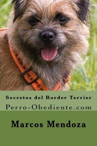 Secretos del Border Terrier: Perro-Obediente.com