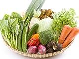 【農家より直送】宮崎情熱野菜セット(10品)  生産農家グル-プ「百姓隊」がお届けする旬の詰合せ。