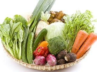 百姓隊 宮崎情熱野菜セット(10品) 「農水省六次化法認定商品」