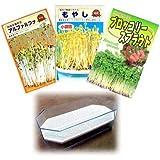 もやし(スプラウト):3種栽培セットA(ブロッコリー、ブラックマッペ、アルファルファ)[タネ][小袋][大容器]