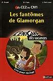echange, troc Alain Surget, Isabelle Petit-Jean - Les fantômes de Glamorgan : Du CE2 au CM1