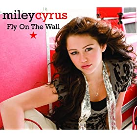 Fly On The Wall (Jason Nevins Remix (Radio Edit))
