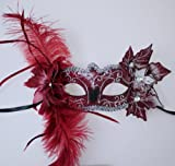 Red and Silver Venetian Feather Mask
