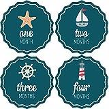 Pinkie Penguin Baby Monthly Stickers - Nautical Theme - Milestone Onesie Stickers - 1-12 Months - Baby Shower Gift