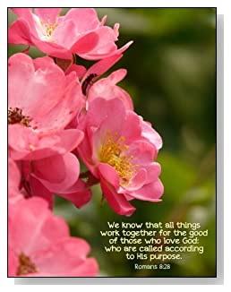 We Know That All Things Notebook - Romans 8:28 with a beautiful pink flower background creates a peaceful and encouraging feel with the cover of this college ruled notebook.