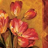 Pandoras Bouquet III by Gladding, Pamela - Fine Art Print on CANVAS : 12 x 12 Inches